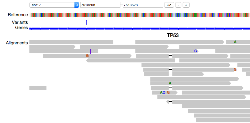 Introducing pileup js, a Browser-based Genome Viewer · Hammer Lab